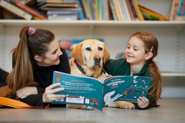 Rezultat iskanja slik za reading dog